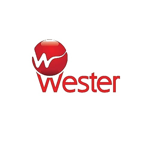 Насосы WESTER (Вестер) в Омске